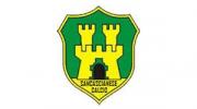 Logo del centro sportivo US Sancascianese Calcio Asd